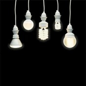 Light Bulbs (7)
