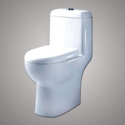 Amerigo One Piece Toilet set